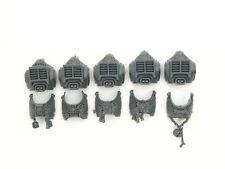 Grey Knights Paladin Squad - Torsos 5x - *Big Pack*