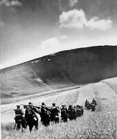 WWII photo  German soldiers are walking along the field during the offensive 1L