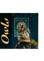 Palau - 2014 - Owls - Souvenir Sheet -MNH