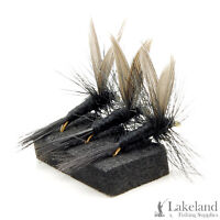 3, 6 or 12x Black Gnat Dry Trout Flies for Fly Fishing