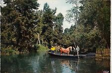 BF15727 marais poitevin passage d animaux dans la marais france front/back image