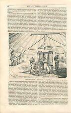 Sucre Moulin Extraction Jus de Canne Chaudière Martinique GRAVURE OLD PRINT 1835