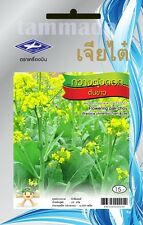Edible rape Thai Vegetable Plant 4000++ seeds in pack