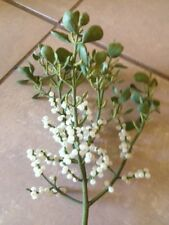 Fresh Cut Real Live Mistletoe With Berries Close to 1 lbs