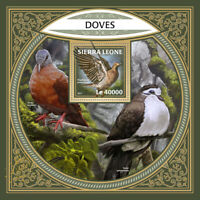 Sierra Leone Birds on Stamps 2017 MNH Doves Pigeons Red-Eyed Dove 1v S/S