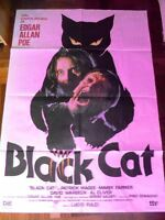 Manifesto BLACK CAT 1981 Lucio Fulci, Mimsy Farmer, Patrick Magee