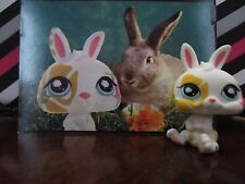Littlest pet shop LPS Bunny Postcard #1067 Hasbro MINT
