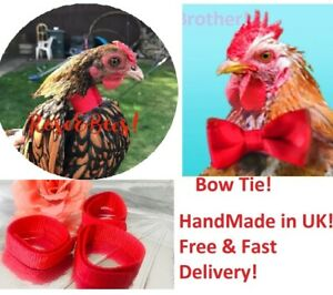 Cockerel Rooster Quiet No Crow Anti Noise Band Collar Poultry Neck HandMade Cock
