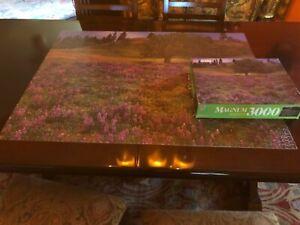 Completely irritating 3000 piece Milton Bradley landscape puzzle