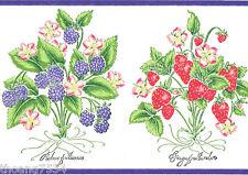 Strawberry Blackberry Fruit Rubus Fruticosus Kitchen Purple Wall paper Border
