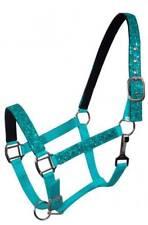 TEAL PONY Size Nylon Neoprene Lined Halter w/ Glitter Overlay! NEW HORSE TACK!