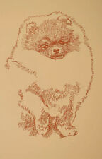 Pomeranian Dog Art Word Drawing Print #48 Kline draws your dogs name free. GIFT