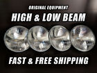 OE Front Halogen Headlight Bulb Chevy Corvair Truck 1961-1964 High Low Beam x4
