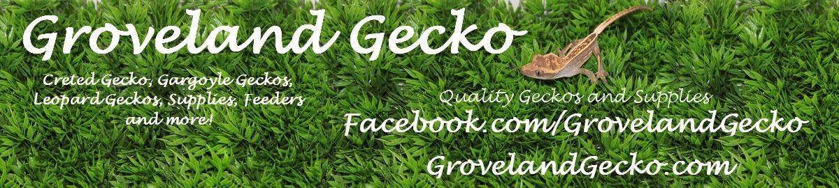 Groveland Gecko