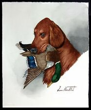 "Jean Herblet, French Artist 17""x 13"" Original Watercolor, Irish Setter, Mallard"
