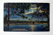 POSTCARD FL MOONLIGHT ACROSS ORANGE GROVES FLORIDA 1956 VINTAGE PC