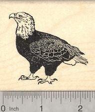 Bald Eagle Rubber Stamp, Raptor, Bird of Prey J26005 WM