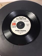 Robin Wilson You Take What Comes Along & I'll Remember  You Promo A&M 45