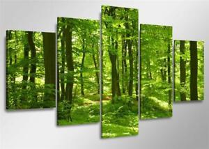 Bild 5 tlg Wasld grün Leinwand 160x80cm XXL Bilder Nr 5507.  Visario