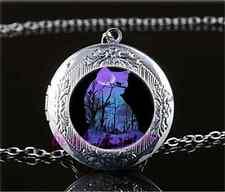 Night Black Cat Photo Cabochon Glass Tibet Silver Locket Pendant Necklace