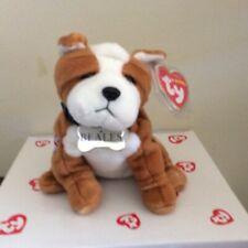Ty Beanie Baby BONZER the Bulldog UK Beales Store Exclusive MWMT