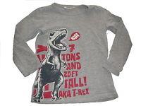 H & M tolles Langarm Shirt Gr. 110 / 116 grau mit Dino Motiv !!
