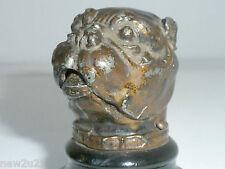 Antique match striker holder Bull Dog Head figural vesta case