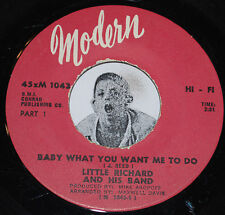 R&B Soul 45~LITTLE RICHARD~Baby What You Want Me To Do Part 1 & 2~Modern
