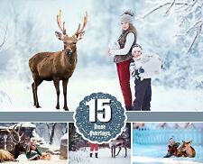 15 Real deer reindeer photoshop Overlays, animals collection, Deer wild Animals,