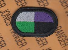 USACAPOC 91st Civil Affairs Bn Airborne para oval patch c/e