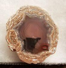 Baker Ranch Geode Half Deming NM Polished Display Specimen Rock 95 Grams