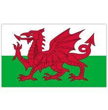 LARGE WALES FLAG  WELISH SPORT OLYMPICS 5FT x 3FT FANS FLAG UNITED KINGDOM