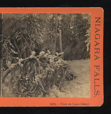 1871 Stereoview Ice on Trees, Luna Island, Niagara Falls in Winter, E&HT Anthony
