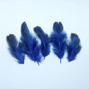 Wholesale 10-100 pcs Natural Pheasant Feather 2-4 inch / 5-10cm DIY Feather