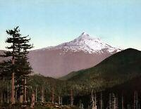 "1898 Mt Hood, Oregon Vintage Photograph 8.5"" x 11"" Reprint"