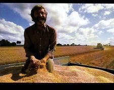 AGRICULTURE / CULTIVATEUR & MOISSONNEUSE à la RECOLTE du BLE