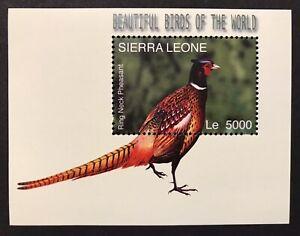 SIERRA LEONE RING NECKED PHEASANT STAMPS 2004 MNH BIRDS WILDLIFE NATURE ANIMALS