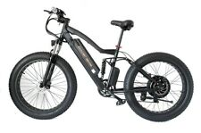 500W Electric Fat Bike with Dual Suspension