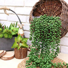 2Pcs Artificial Succulents Hanging Plant Fake String Pearls  Christmas Decor Ivy