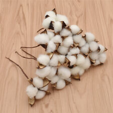 10X Natural Cotton Dried Flower Heads Artificial Branch Wedding Party Home Decor