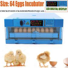 ✔ ✔ Fully Automatic Incubator 64 Egg, Goose,Chicken,Duck,Quail 110V/12V Hatcher