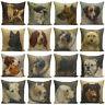 Print Dog Cushion Sofa Throw Cover Case Decor Pillow Home 18''