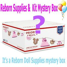 REBORN - Doll Mystery Fun Box to include a reborn kit & supplies - Read Details