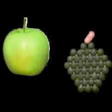 Vitamine & Lifestyle Nahrungsergänzungsmittel