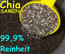 Chia Seeds 100 g Pure Chia Seeds Low Carb Diet Food Supplement Raw Food Quality