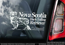 Nova Scotia Duck Tolling Retriever - Car Window Sticker -red Toller Dog on Board