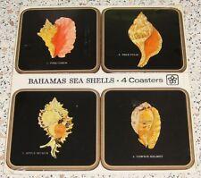 ♥♥PIMPERNEL♥♥Bahamas Sea Shells♥4 Untersetzer♥Muscheln Karibik♥Untersetzer♥♥OVP♥