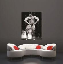 Dorian Yates Bodybuilder Giant Poster Art Print