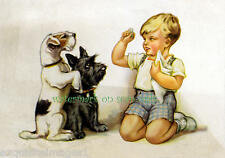 Cute Boy Trains Scottish Terrier & Fox Terrier Dogs~Becker? New Large Note Cards