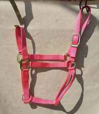 LOT OF 6 - Brand new pink premium halter by Hamilton MEDIUM HORSE SIZE